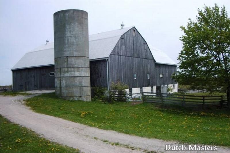 Wyndalways farm dutch masters horse barn builders ontario for Barn builders ontario