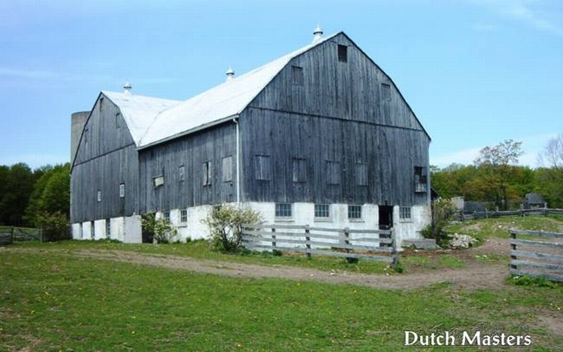 Wyndalways Farm Dutch Masters Horse Barn Builders Ontario