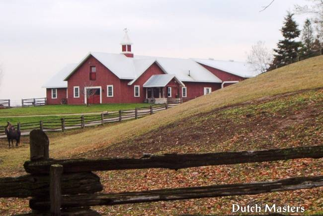 Coffey creek dutch masters horse barn builders ontario for Barn builders ontario